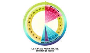 tomber enceinte cycle